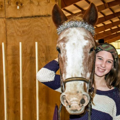 Judson horse decorated bridal for Christmas